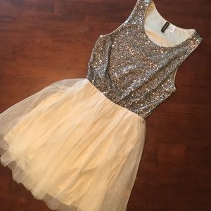 H&M Sequin Tulle Dress